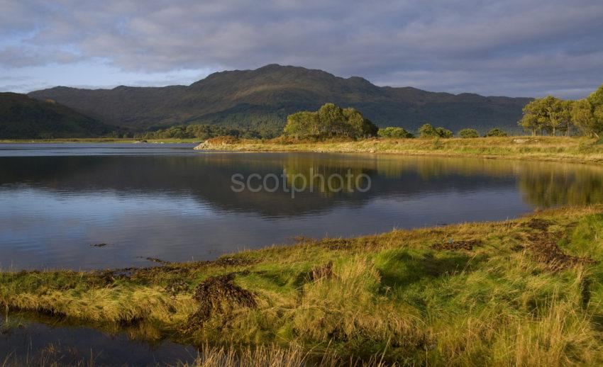 Y3Q9992 Autumn On Loch Sunart