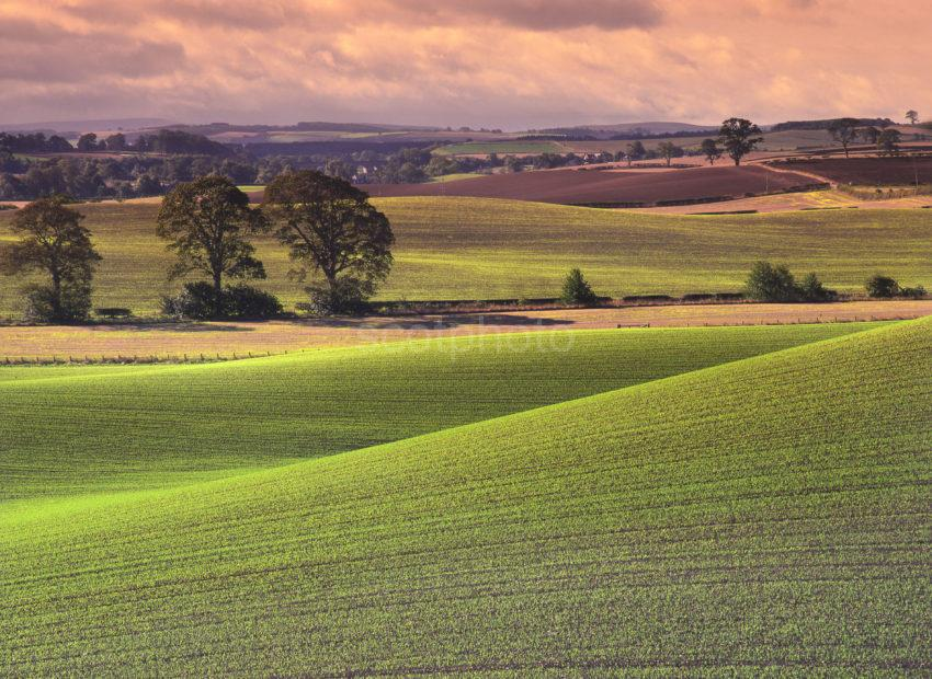 Rolling Fields Great Lighting Full Picture