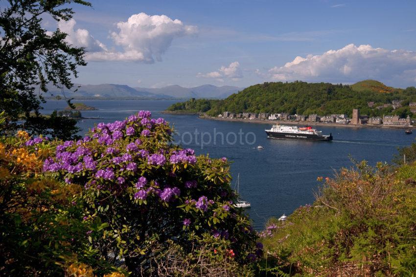 Clansman Departs Oban Bay Spring 2013