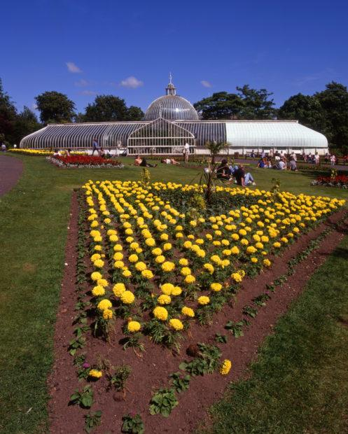 Botanical Gardens And Kibble Palace West End Of Glasgow