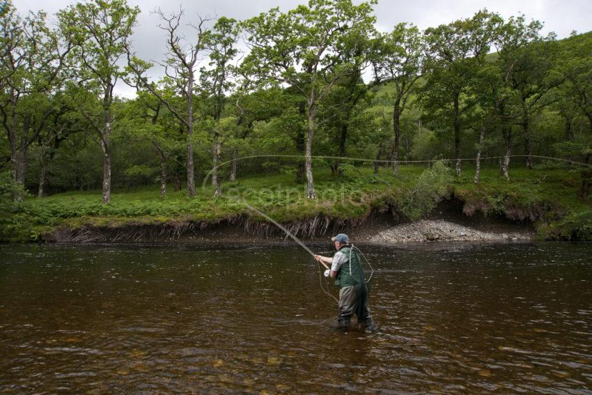 Casting On The River Orchy
