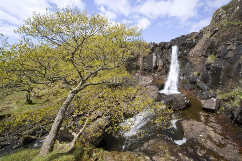Waterfall On North West Coast Of Mull