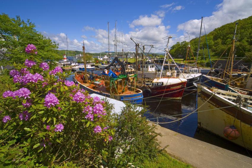 WY3Q0910 Springtime Crinan Harbour Argyll
