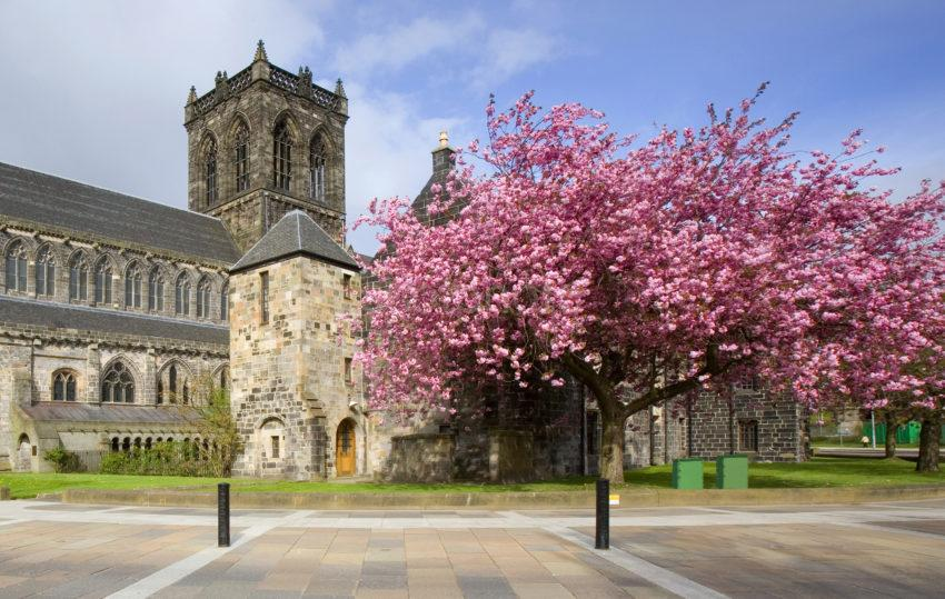 Paisley Abbey In Spring 07 Cropped