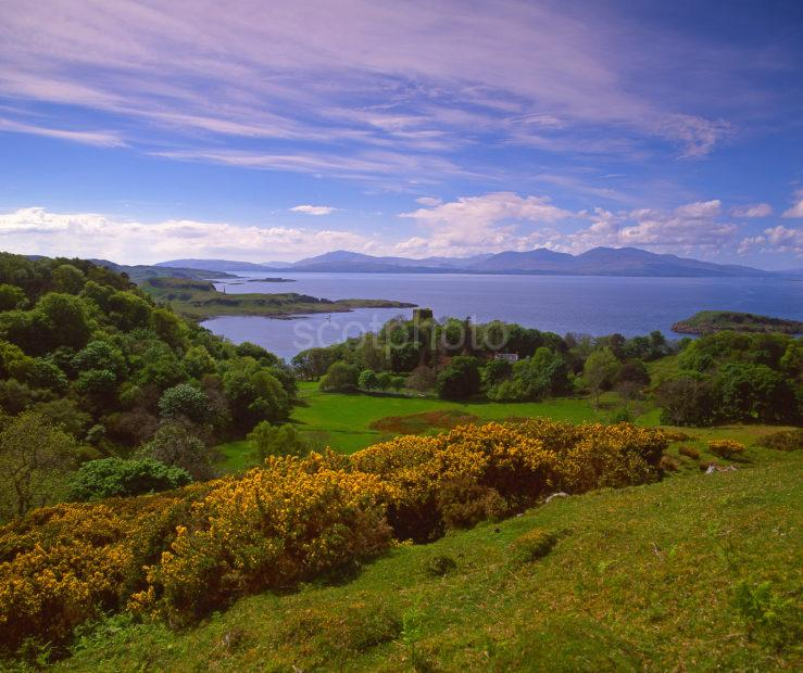 Spring View Towards Dunollie Castle And Distant Mull Argyll