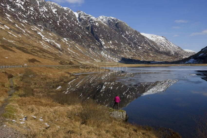 I5D9951 Pass Of Glencoe Tourist In The Pink