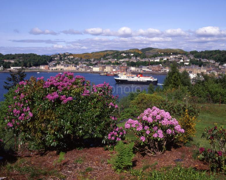 Beautiful Summer View Of Oban Bay