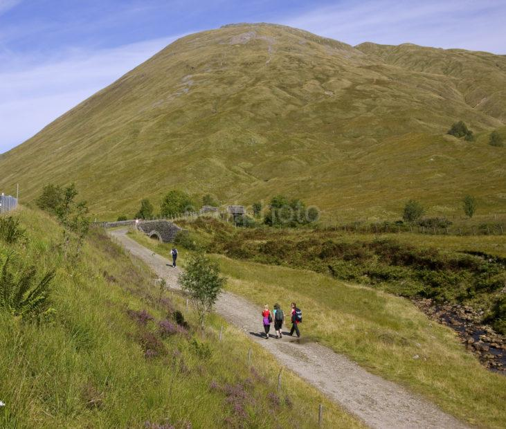 The West Highland Way Nr Tyndrum