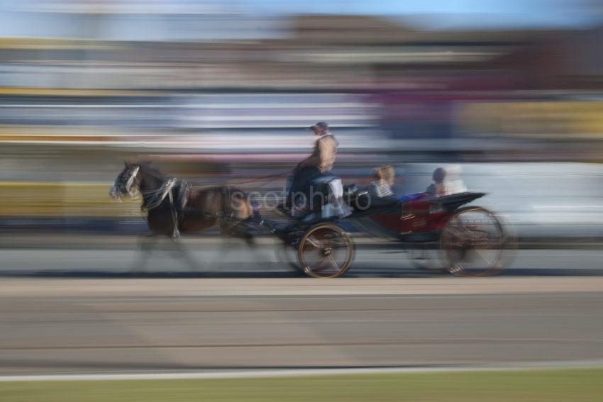 Horse And Cart At Speed