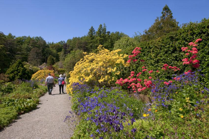 Visitors Stroll Through Arduaine Garden