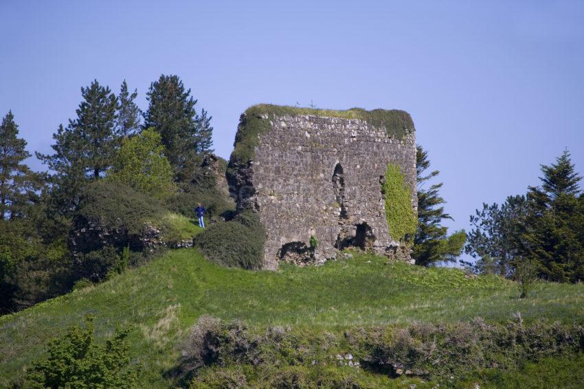 WY3Q9840 Aros Castle Mull