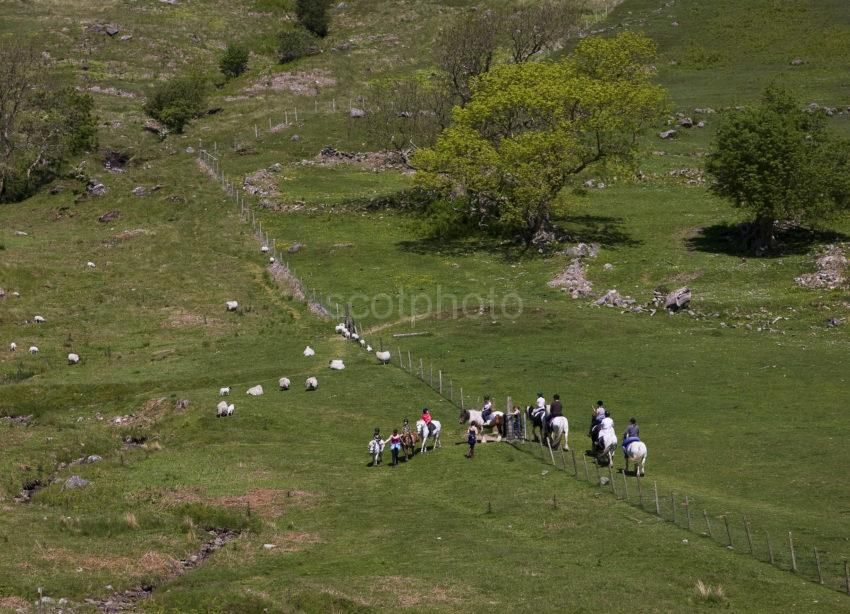 Pony Trekking On Arran