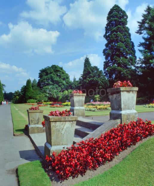 Rouken Glen Gardens