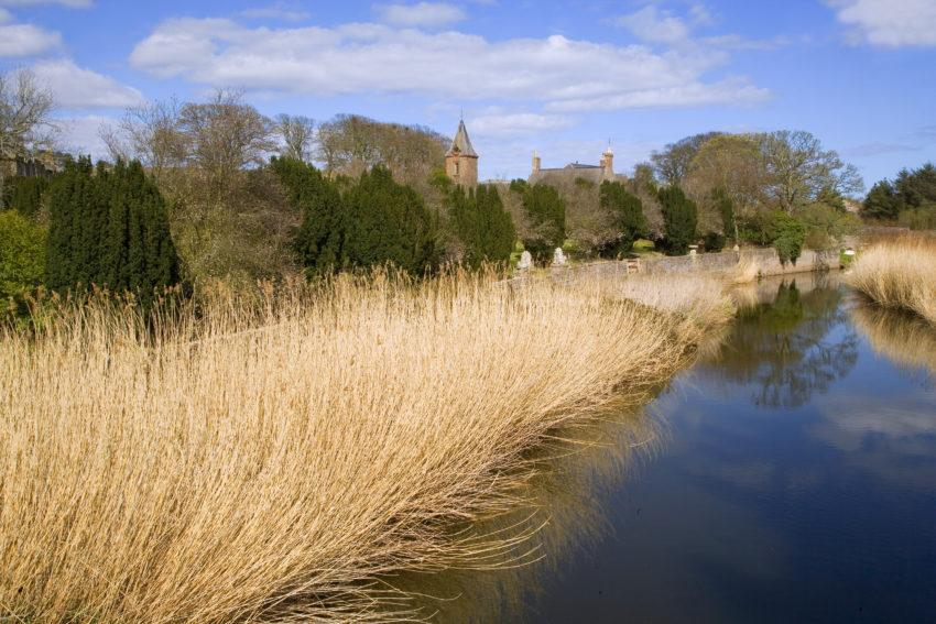 WY3Q9786 River Reeds And Church Angus Lunan Water