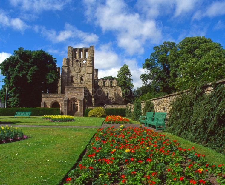 View Of Kelso Abbey In The Summer From The Abbey Garden Kelso Roxburghshire Scotland