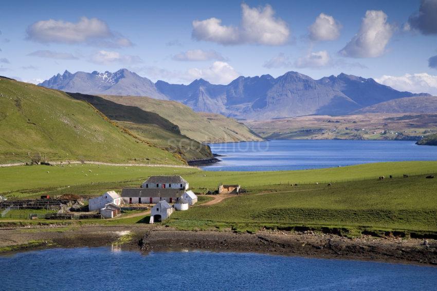 WY3Q9764 Gesto Bay Loch Harport And Cuillin Hills Skye