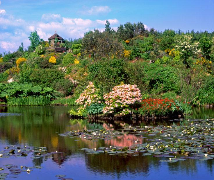 Glen Whan Gardens Nr Dunragit Luce Bay Wigtownshire