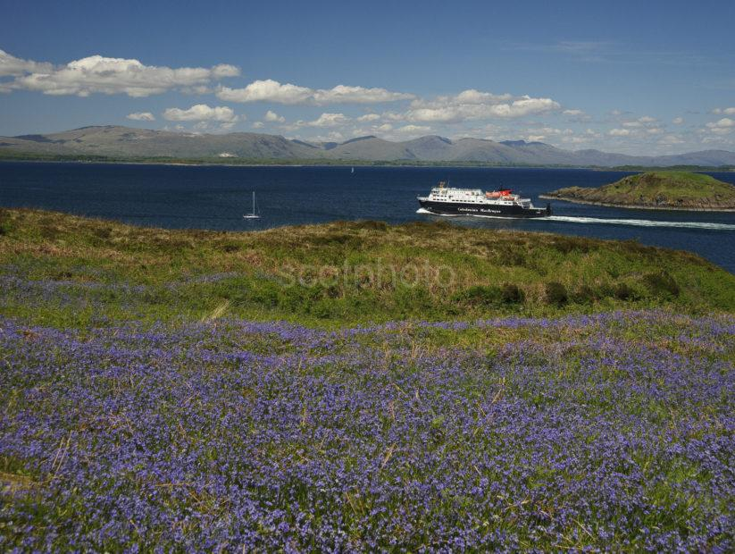 MV CLANSMAN AFTER DEPARTING OBAN