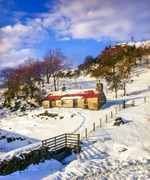 Winter Croft Argyll West Highlands