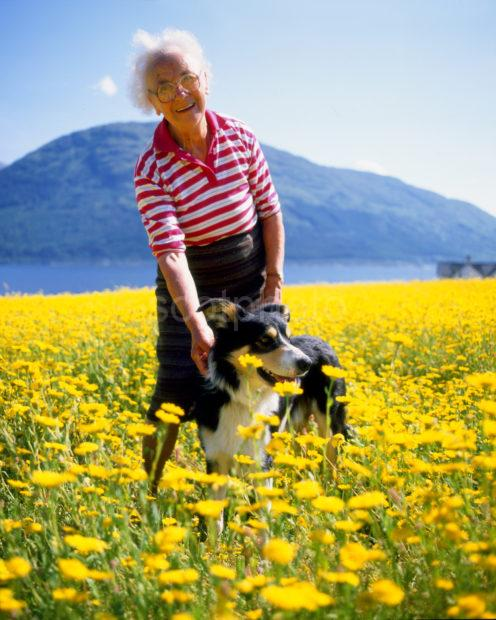 Lady With Her Dog In Field Of Daisies Onich Loch Leven