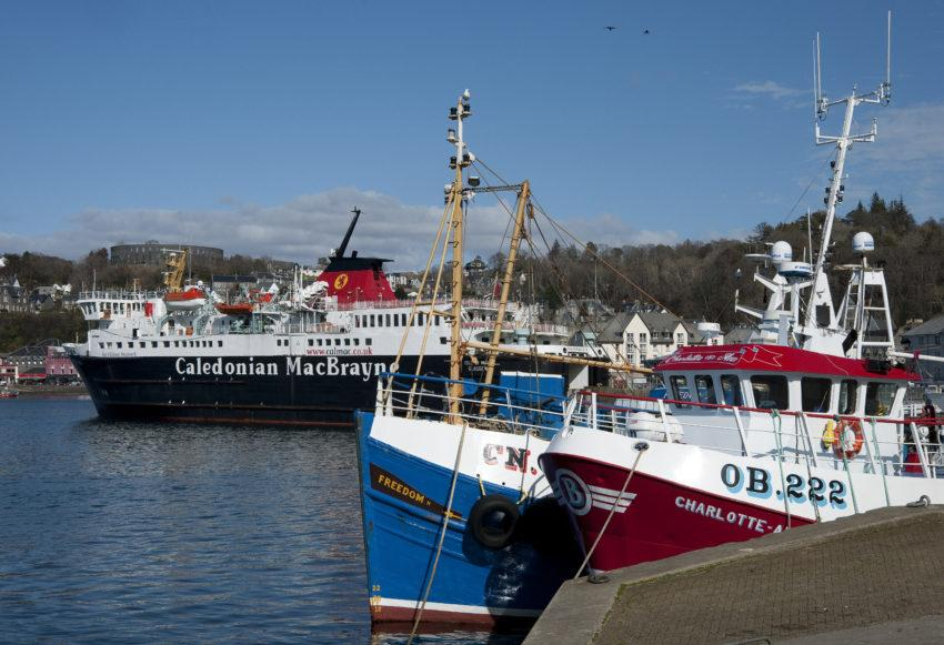 DSC 8983 FISHING BOATS AND MV ISLE OF MULL OBAN