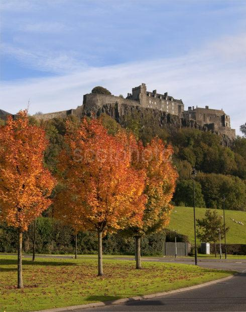 Portrait Stirling Castle In Autumn