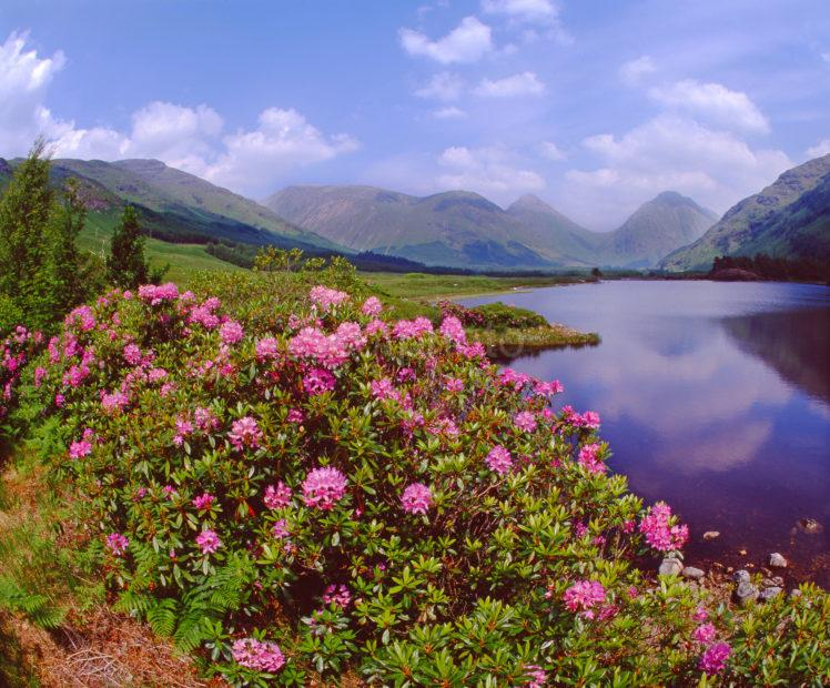 Lovely Springtime View In Picturesque Glen Etive Argyll