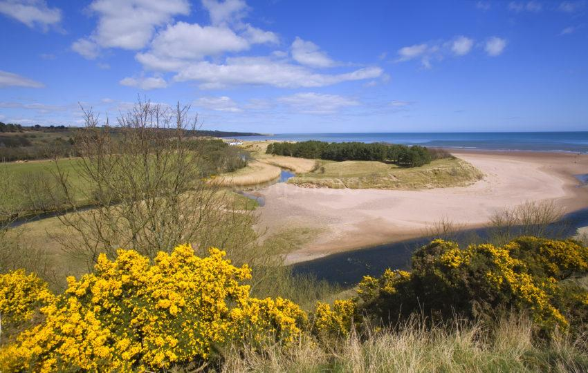 Lunan Bay From Redcastle Angus