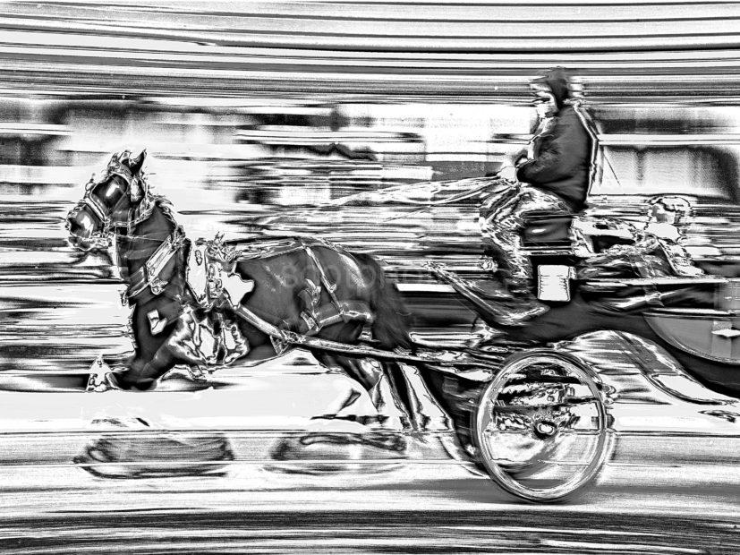 CARD 29 NEW HORSE AND CART BW