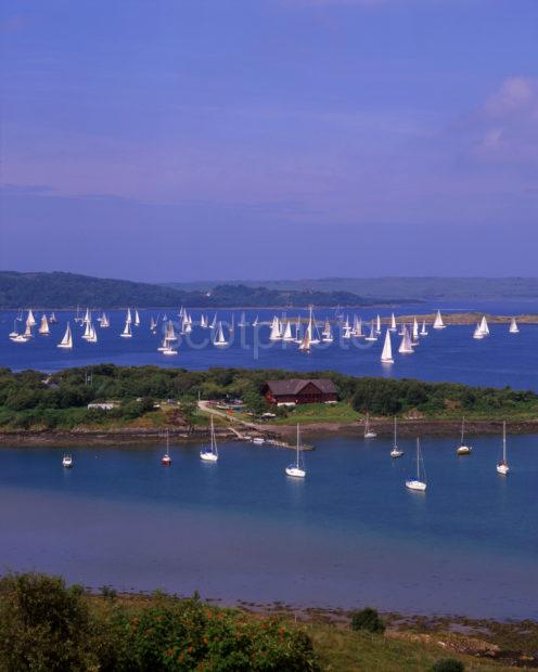 West Highland Yachting Week At Croabh Haven Loch Melfort Argyll