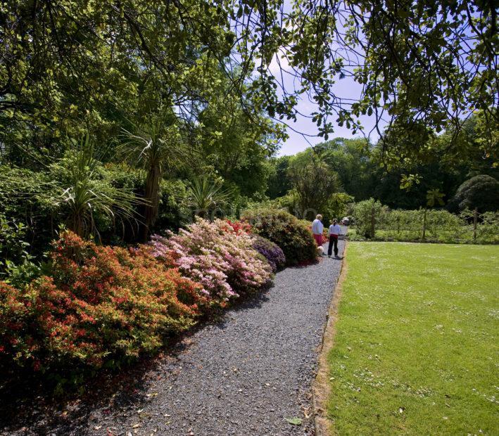 Beautiful Gardens Achamore On Isle Of Gigha