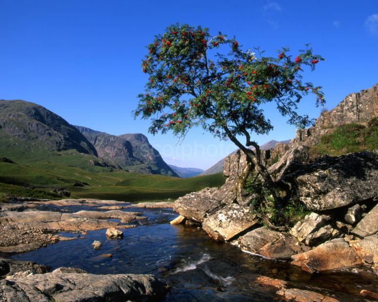 Three Sisters Of Glencoe From Upper Glen Coe Autumn