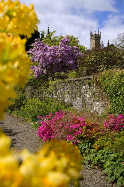 Portrait Picture Of Ardmaddy Gardens