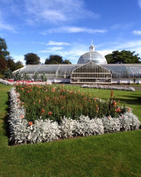 Botanical Gardens And Kibble Palace Glasgow