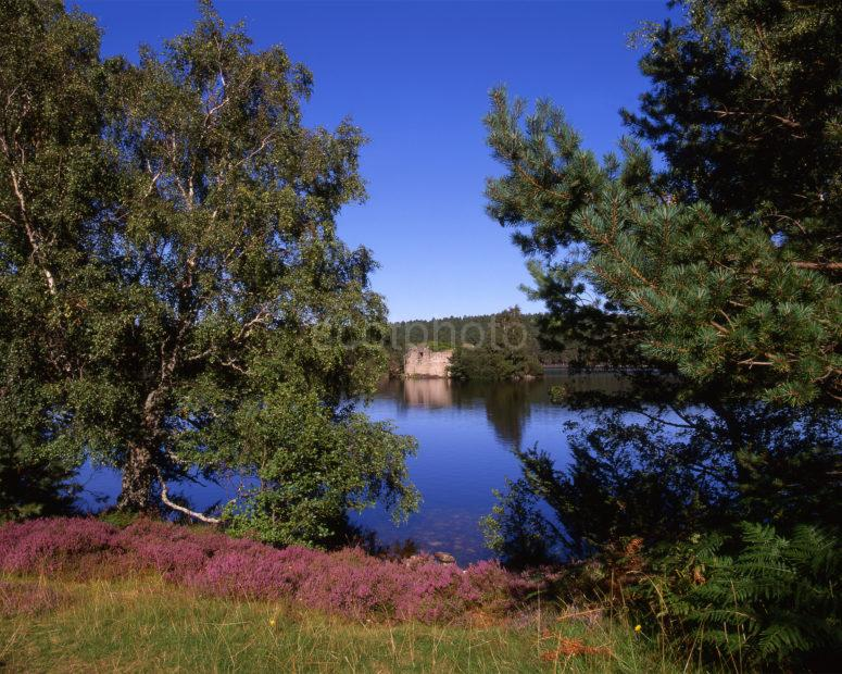 Loch An Eilein Cairngorms