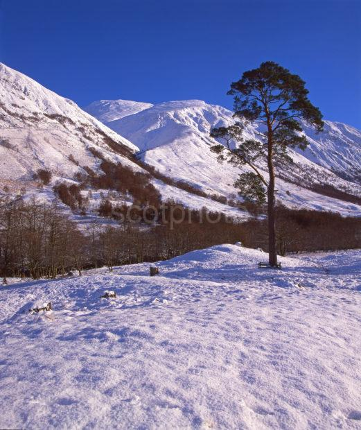 Winter Arrives In Glen Nevis With Ben Nevis In View Lochaber West Highlands