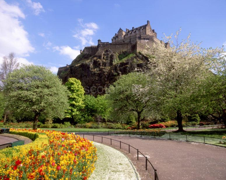 Edinburgh Castle From Princes Street Gardens In Spring