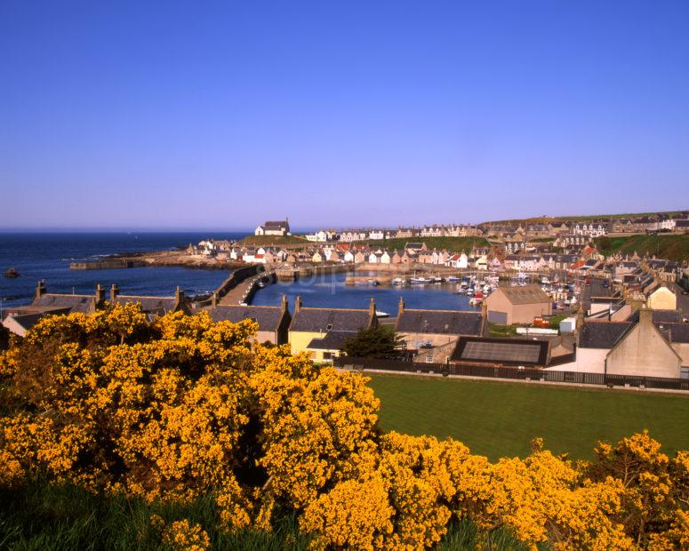 Spring View Of Findochty Harbour And Town From Monument Hill Moray