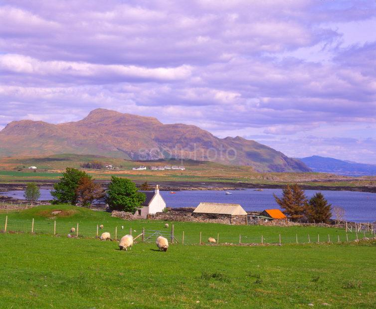 Summer View From Kilchoan Across The Bay Towards Ben Hiant Ardnamurchan West Highlands