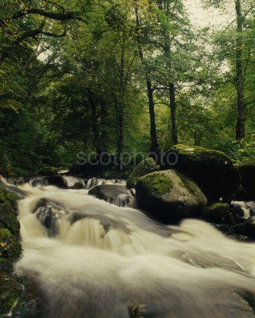 The Birks Of Aberfeldy In Full Flow Aberfeldy Perthshire