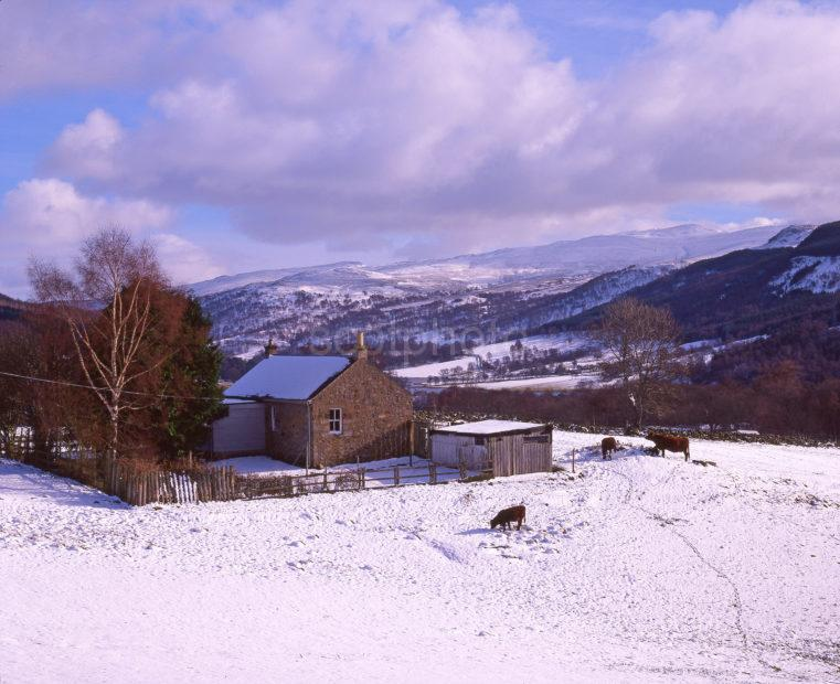 Winter Scene From The North Side Of Loch Tummel Perthshire