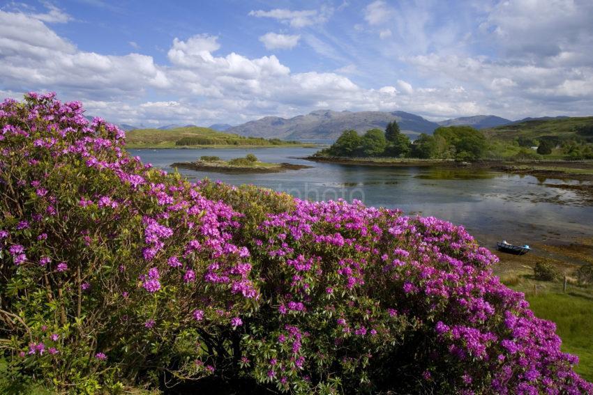 R7I8309 Isle Oransay Sleat Isle Of Skye