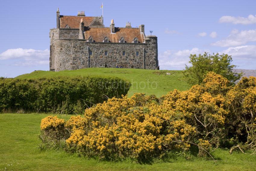 Duart Castle In Spring
