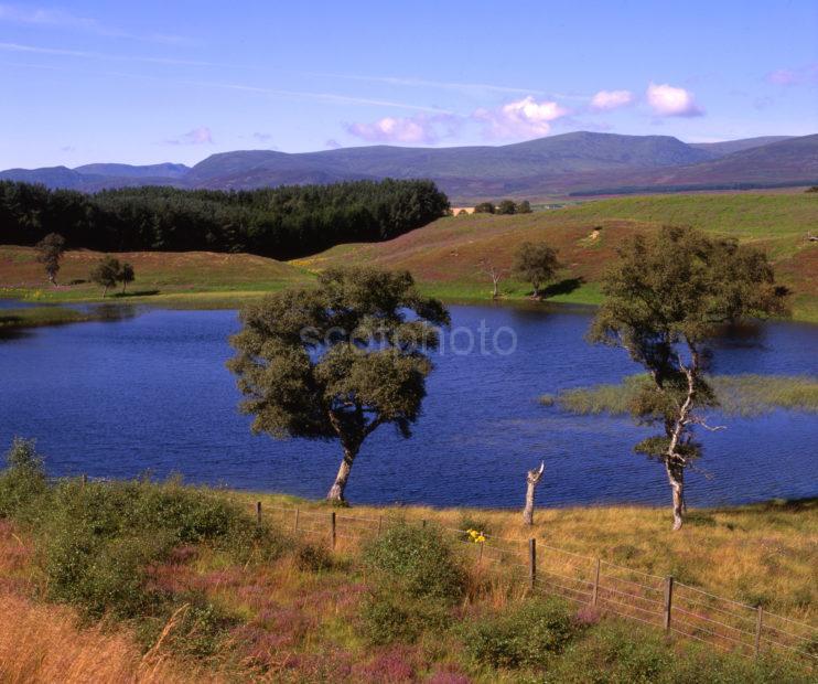 Lochan North East Of Kingussie