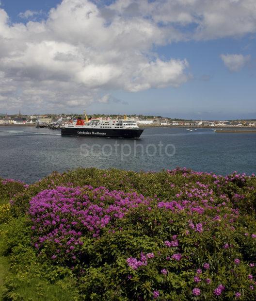 Portrait Of Isle Of Lewis Departing Stornoway