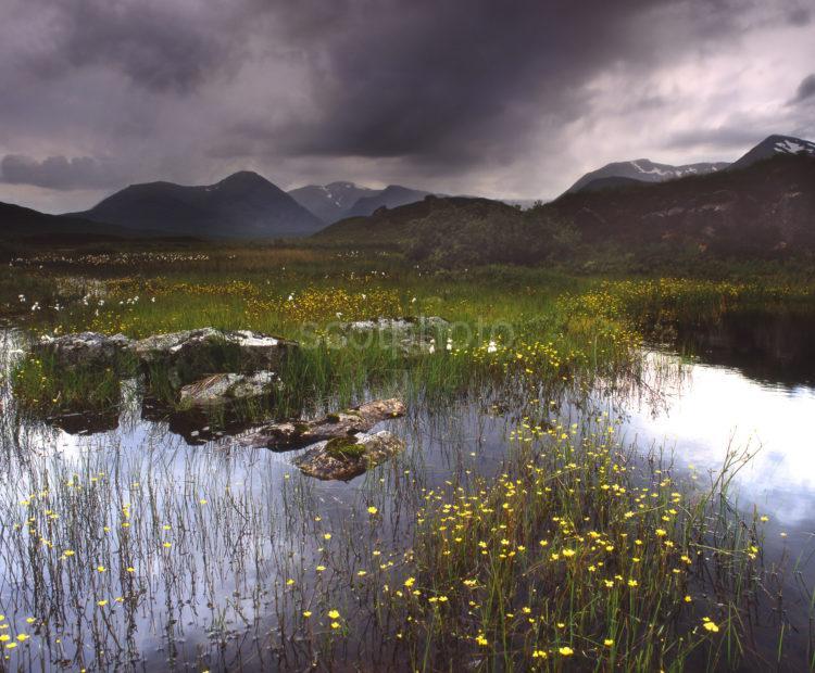 Stormy Scene On Rannoch Moor