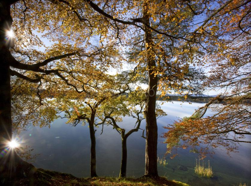 Starburst Reflection In Autumn Lake Of Meneith