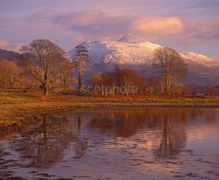 Lovely Autumn View From The Shore Of Loch Etive Towards Ben Cruachan Connel Argyll