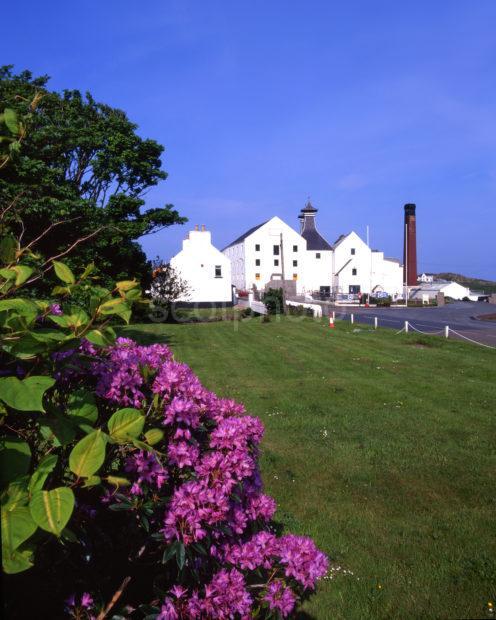 Springtime View Of Lagavuillin Distillery Island Of Islay