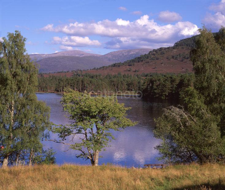 Late Summer View Across Lochan Eilean